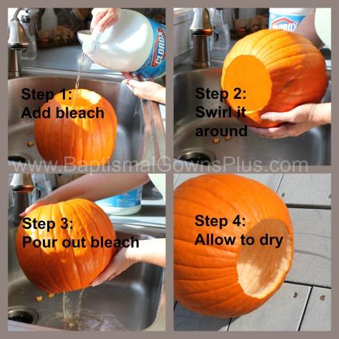 pumpkin planter - preserve