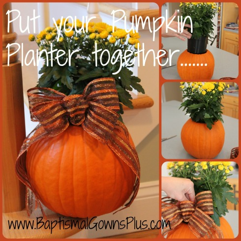 pumpkin planter - put it together