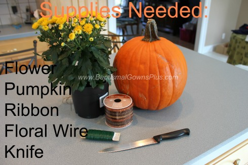 pumpkin planter - supplies needed